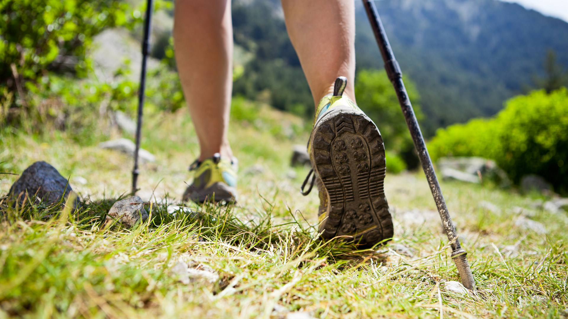 Trekking & Nordic Walking